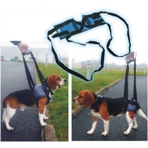 Trela para Patas (Handy Canis)